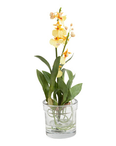 11in Mini Faux Oncidium Plant