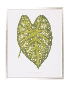 24x30 Vintage Leaf Print Wall Art
