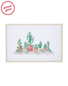 36x24 Potted Cactus Framed Wall Art