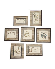 7pc Snakes Under Glass Wall Art