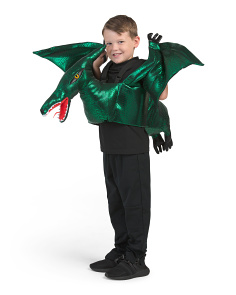 Kids Step In Pterodactyl Costume