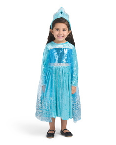 Toddler Arctic Princess Costume