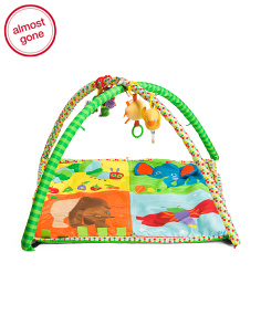 Eric Carle Activity Gym