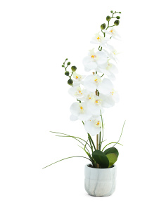 24in White Orchid In Marble Pot