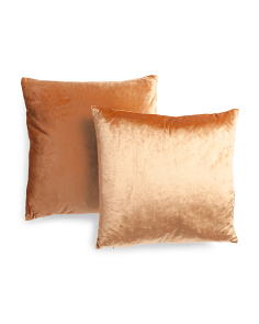 2pk 20x20 Velvet Pillows