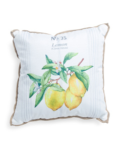 20x20 Indoor Outdoor Lemon Pillow