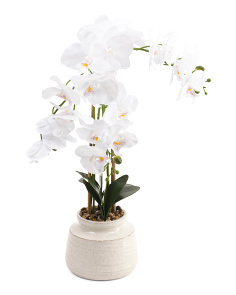 27in Real Touch Orchid In Ceramic Pot