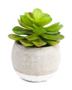 8.5in Faux Succulent In Pot