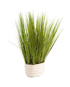 26in Grass In Ceramic Pot
