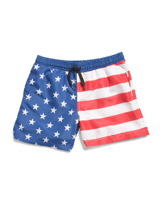 Big Boys Americana Volley Swim Short
