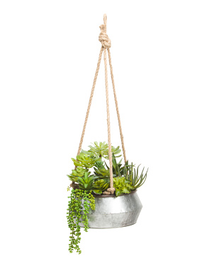 10.5in  Hanging Succulent In Galvanized Bowl
