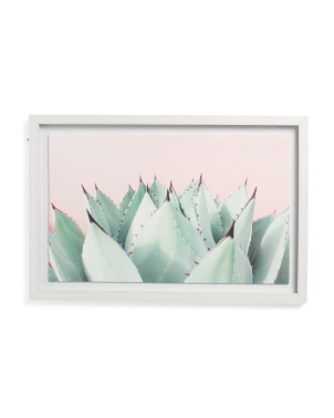 24x16 Succulent Wall Art