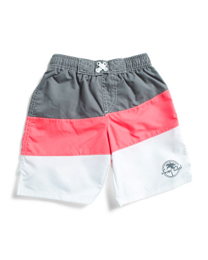 Little Boys Color Block Swim Trunks