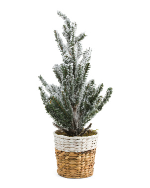 24in Faux Nordic Tree In Basket