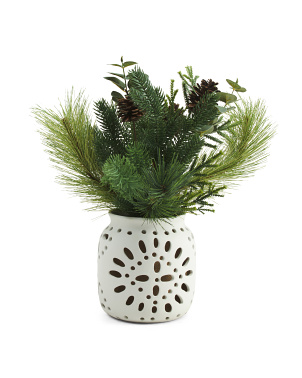 Christmas Pine In White Cut Out Vase