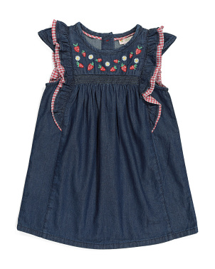Toddler Girls Embroidered Denim Dress