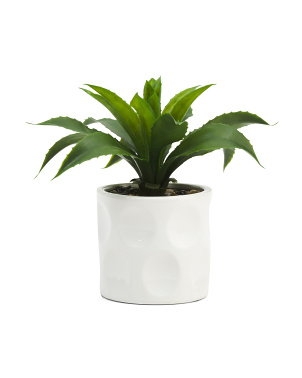 10in Greenery In Ceramic Pot