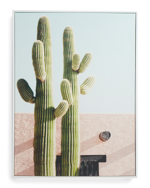 18x24 Cactus Villa Pink Canvas Wall Art