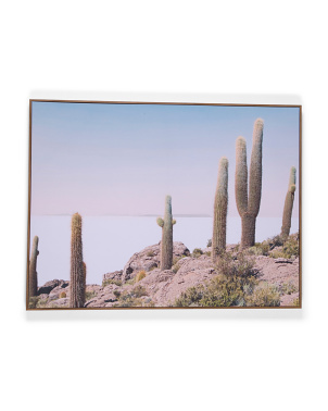 40x30 Cactus View Canvas Wall Art