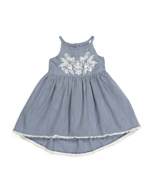 Toddler Girl Embroidered Chambray Dress