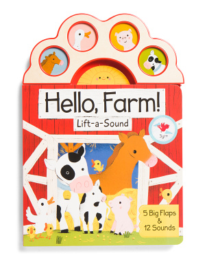 Lift A Flap 4 Button Sound Book
