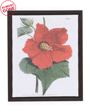 18x22 Framed Hibiscus Antique Print Recolor Wall Art
