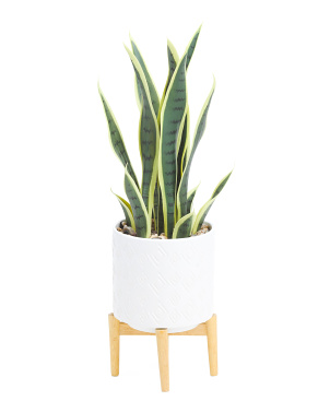 25.5in Faux Sansevieria In Ceramic Pot With Wooden Stand