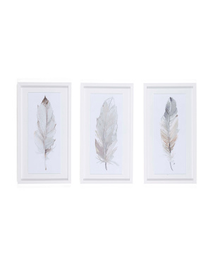13x25 Set Of 3 Framed Neutral Feather Wall Art