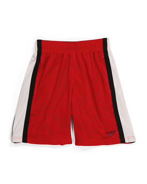 Big Boy Vector Training Mesh Shorts