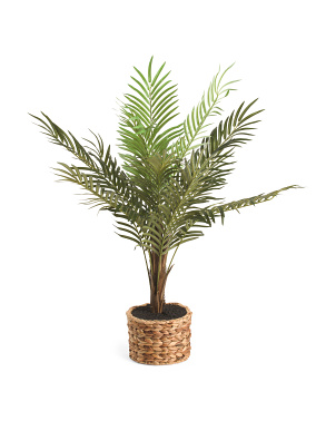 48in Faux Palm In Woven Basket With Dirt