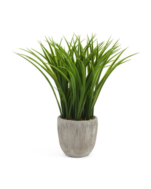 Grass In Vertical Grain Pot