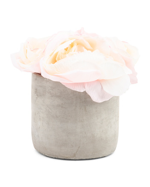 Roses In Cement Vase